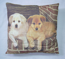Premium premium printing cushion cover