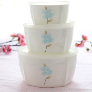 Create bone china Fresh box