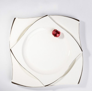 Bone china steak plate,dinner plate ,dishes