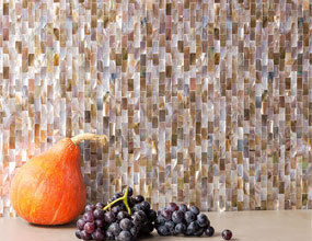 Shell Mosaic Wall Tile