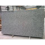 PFM Granite Slabs Chinese G439 White Granite Slabs Tiles For Facade