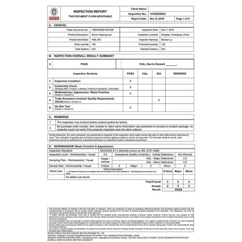 BV INSPECTION REPORT