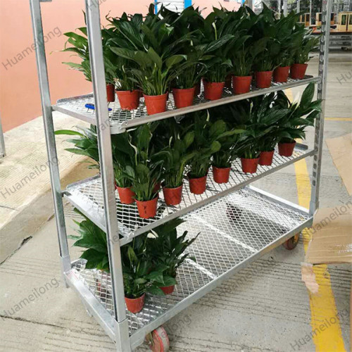 Greenhouse metal wire mesh shelves flower danish cc trolley cart for transporting plants
