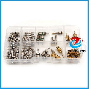 58 pcs auto A/C Air Conditioning Core valve 134a R12 for Big Buick Jetta Fukang