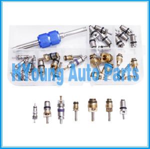 Universal R134A/R12 valve core kit