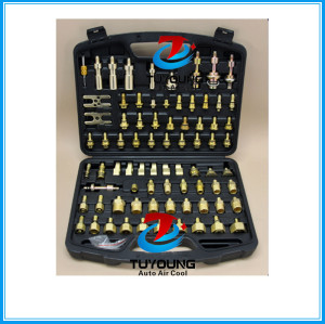 Auto a/c system Leak Detection tools, a multi-element set of adapters for checking, diagnosing leaks rinsing car air conditioning systems, Connections for European and Japanese cars