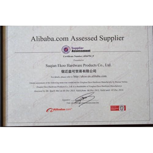 Supplier Audit Bureau Veritas Certification