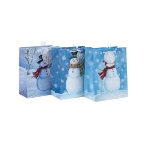 Fournisseur chinois coloré décoratif imprimé sac de papier cadeau de Noël avec 3 dessins assortis dans l'emballage de Tongle