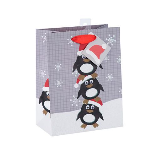 La bolsa de papel impresa de las artesanías del nuevo diseño de la Navidad con diverso tamaño con 2 diseños clasificados en embalaje de la llave