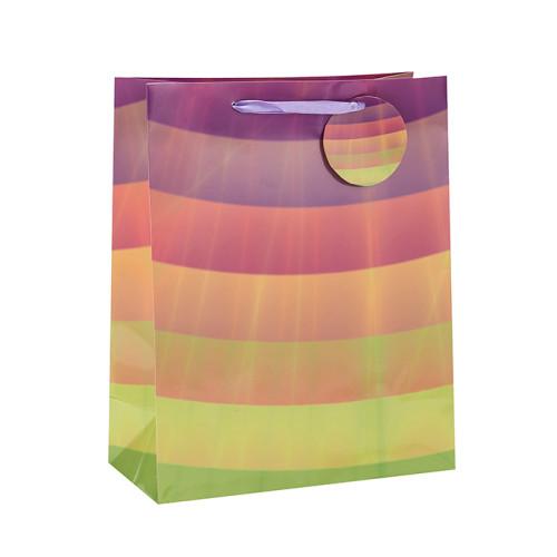Bolsos reciclables de calidad superior del regalo del papel del diseño con la etiqueta colgante con diverso tamaño con 4 diseños clasificados en embalaje de la llave