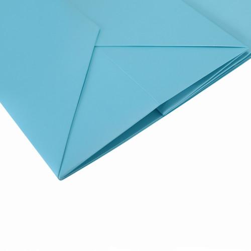 Kundenspezifischer dekorativer Offsetdruck-Luxusgeschenk-Papppapier-Tasche mit Logo in der Tongle-Verpackung