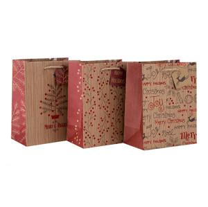 大規模な環境にやさしいカスタムロゴタングパッキングで盛り合わせの3つのデザインと異なるサイズのハングタグ付きプリントハンドル紙袋