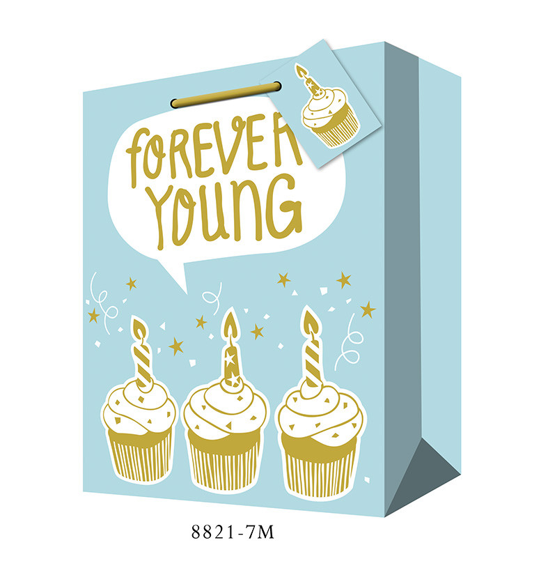 forever young happy birthday gift bag
