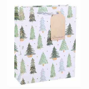 Best Sale High Quality Eco-Friendly Nice Printing Decorative Gift Packing Paper Merry Christmas Bag With Glitter In Tongle Packing