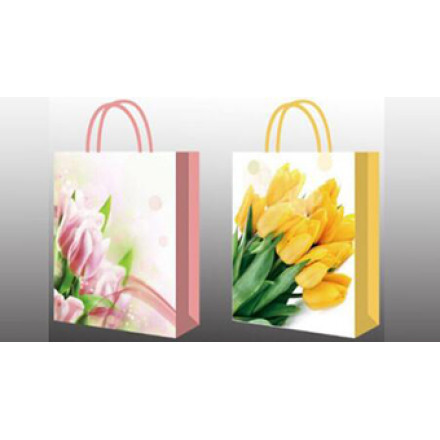 New Arrival Design Paper Bags
