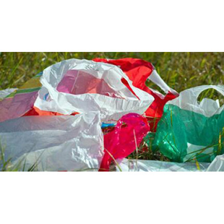 About The Plastic Bag Ban