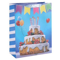 Party Happy Birthday Cake With Shining Glitter Paper Gift Bags