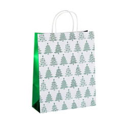 Eco-friendly Recycled Glossy Custom Design Printing Paper Carry Bags with Different Size