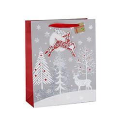 High Quality Custom Sizes Color Printing Gift Paper Christmas Bag with Different Size