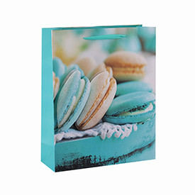 Fashionable Custom printed macaroon paper bags with ribbon handle
