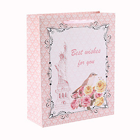 Best Wishes For You Flower and Bird Style Gift Paper Bag with 4 Designs Assorted