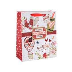 Heart Style Valentine's Day Gift Paper Bag with Custom Logo with Hang Tag with Different Size