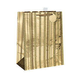 Ribbon Handles Custom Design Own Logo Print Daily Paper Bag with Hang Tag with Different Sizes