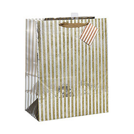 Custom Ribbon Handle Excellent Design Paper Bag with Different Size with 2 Designs Assorted