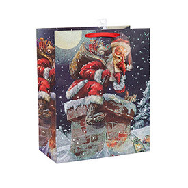 2018 Christmas Fancy Design Crafts Printed Paper Bag  with Different Size with 3 Designs