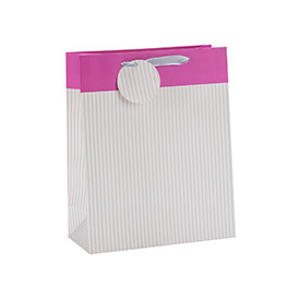 Everyday Fashionable Foldable Ribbon Handle Gift Paper Bag with Paper Tag