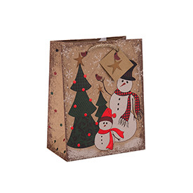 Factory Price Eco-friendly Durable Custom Size Paper Bag with Different Size with 2 Designs Assorted