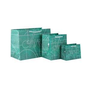 Professional Manufacture Customized Own Logo Design Paper Bags with 3 Design Assorted