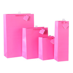 Custom Your Solid Color Printed Paper Bags Made With 157gsm Art Paper