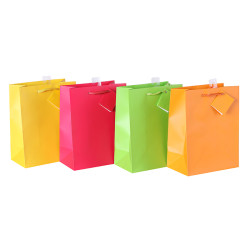Colored Printed Paper Gift Bags With Hangtag and Pvc Hook At Wholesale Prices