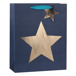 Men's Everyday Paper Carrier Bags With Texture and Star Hot Foil Stamping On Front Side