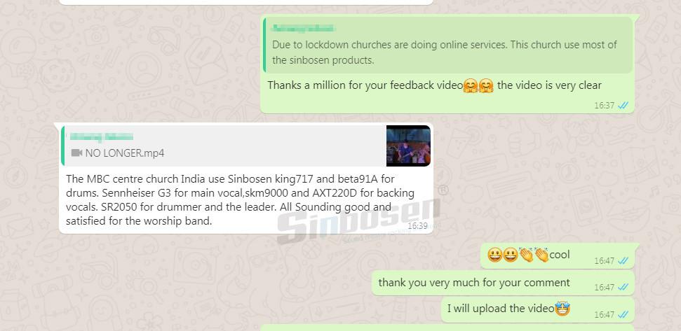 Sinbosen microphones feedback