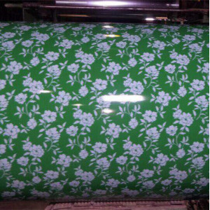best price ss400 PPGI   Hebei