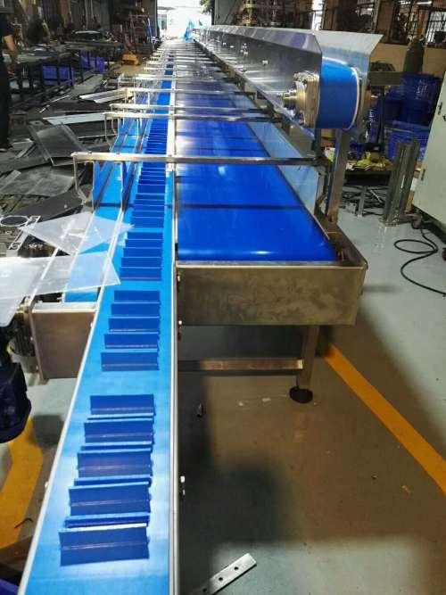 بلو بو الغذاء الصف غسل الماء الحزام الناقل للبيع 4 قنوات الإرسال