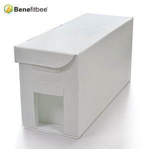 Plastic Material Beekeeping Kit High Quality 5 Frames Beehive For Beekeeping Supplies Benefitbee