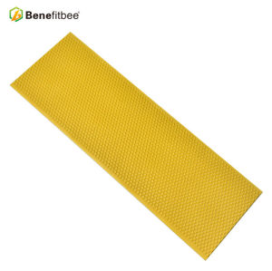 High Quality Beekeeping Tools Raw Beewax Beehive Yellow Honey Combs With Beehive Accessories
