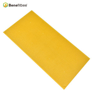 Beekeeping Equitment Raw Beewax 16.5*8.27inch Yellow PP Honey Combs For China Supplies