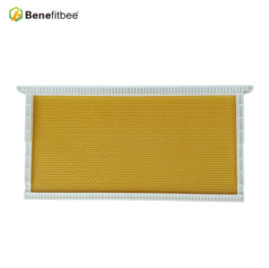 Beekeeping Equitment 16.73*4.92inch Raw Beewax White PP Honey Combs For Beehive Accesssories