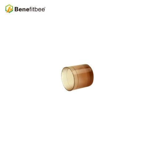 养蜂工具蜂具意蜂塑料王台育王盒蜜蜂养殖工具蜂王育王台厂家直销