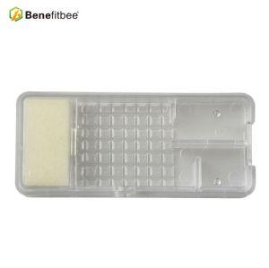 新款养蜂工具蜂具批发透明王笼蜂王囚蜜蜂蜂箱工厂直销品质款