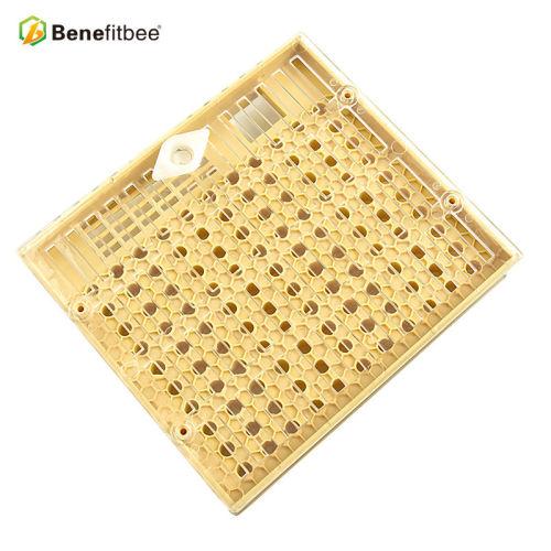 养蜂工具蜂具免移虫育王盒蜂箱配件厂家直销