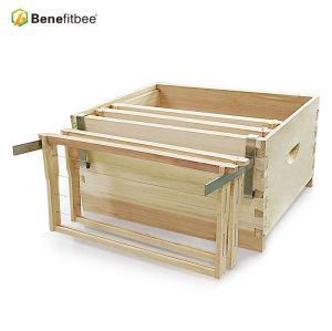Nouveau support de cadre de ruche en métal de crochets protecteurs de conception pour l'équilibre apicole