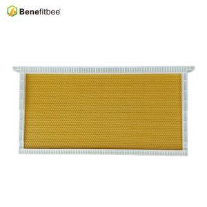 厂家直销出口养蜂工具塑料巢础(滚塑)蜜蜂优质巢础