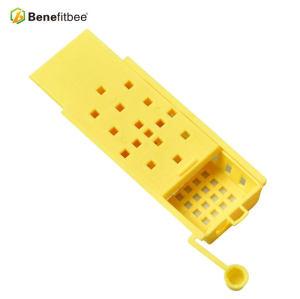 厂家直销养蜂工具 蜂王黄色王笼(带耳朵) 供应蜂具配件批发