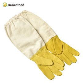 High Quality White Canves Protective Gloves For Beekeeping Tools
