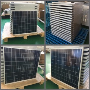 5-100w  pieces of high efficiency polycrystalline photovoltaic module panels, photovoltaic power station panels.